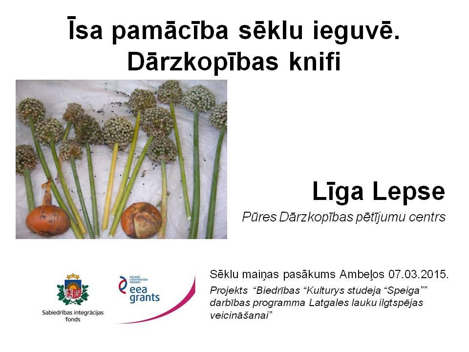 Līgas Lepses prezentācija