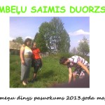 Saimis+duorzs+201512