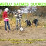 Saimis+duorzs+201518